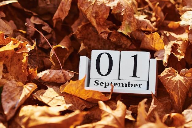 Bloque de calendario de madera con fecha 1 de septiembre en hojas de otoño caídas