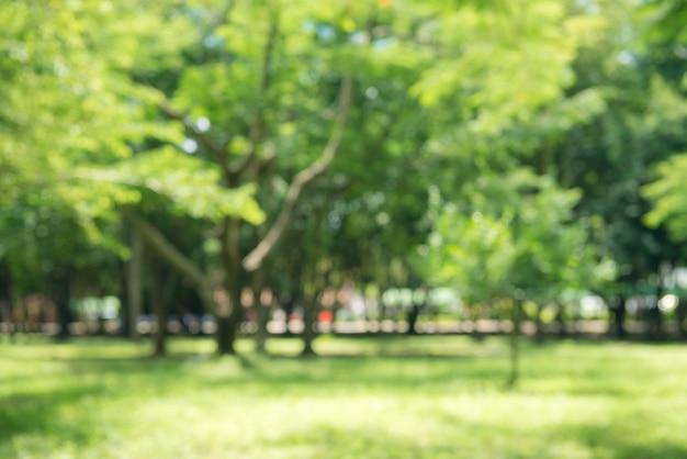 Blur naturaleza parque verde con bokeh luz del sol resumen de antecedentes. copie el espacio de la aventura de viaje y el concepto de medio ambiente. estilo del color del filtro del tono de la vendimia.