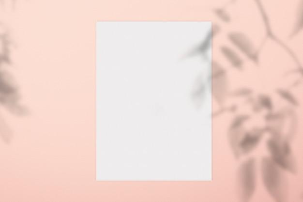 Blured de la sombra de la rama y el papel vacío en textura concreta.