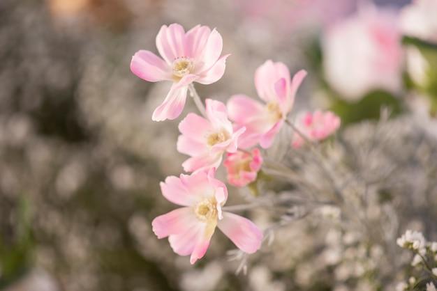Boda telón de fondo con flores y decoración de bodas.