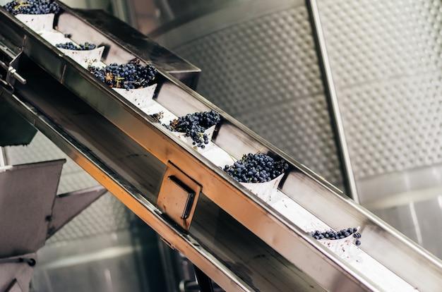 Bodega moderna máquina con uvas