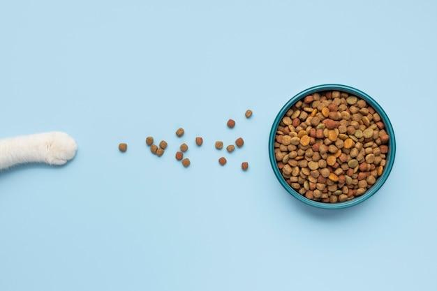 Bodegón composición de alimentos para animales domésticos.