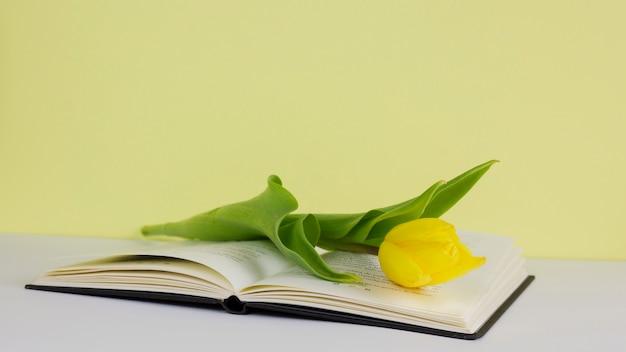 Bodegón con concepto de literatura