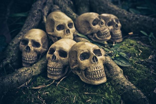 Bodegón con cráneo humano en las raíces.