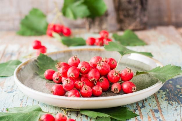 Bodegón de otoño cosecha de bayas de espino con hojas en un plato en un rústico