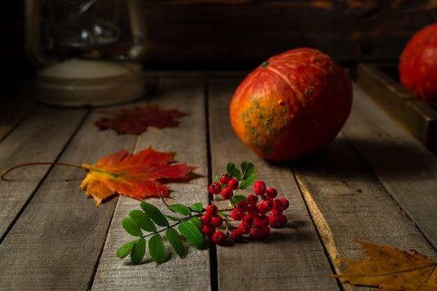 Bodegón con pequeñas calabazas de otoño y rama de bayas de serbal