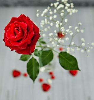 Bodegón romántico, rosa roja, chocolate en forma de corazones.
