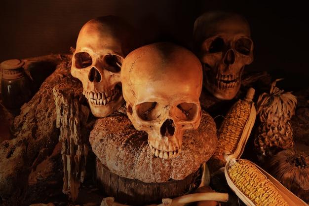 Bodegón con tres cráneos y fruta seca en mesa de madera
