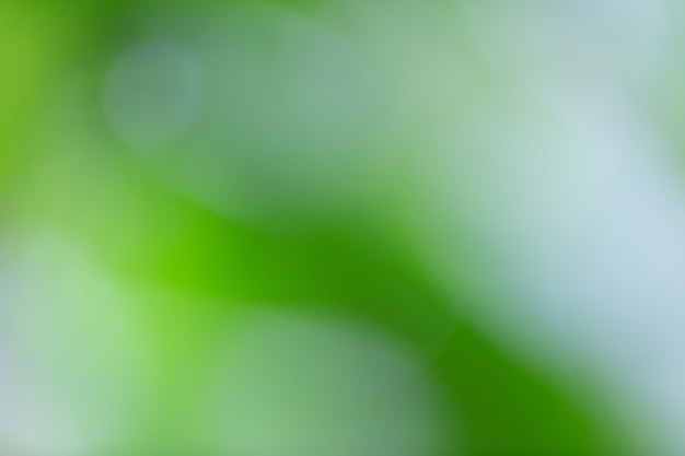 Bokeh verde en la naturaleza desenfoque. elemento de diseño.
