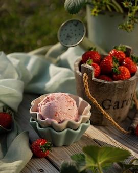 Bolas de helado de fresa con fresas frescas en hermosos cuencos de helado. herramienta de jardín de la vendimia