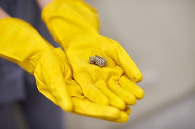 Bolas de polvo, pelusa y pelusa en manos humanas