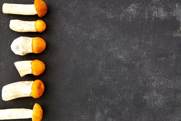 Boletus de tapa naranja setas en una fila sobre fondo oscuro. concepto de naturaleza, medio ambiente y hongos comestibles con espacio de copia. vista superior, endecha plana