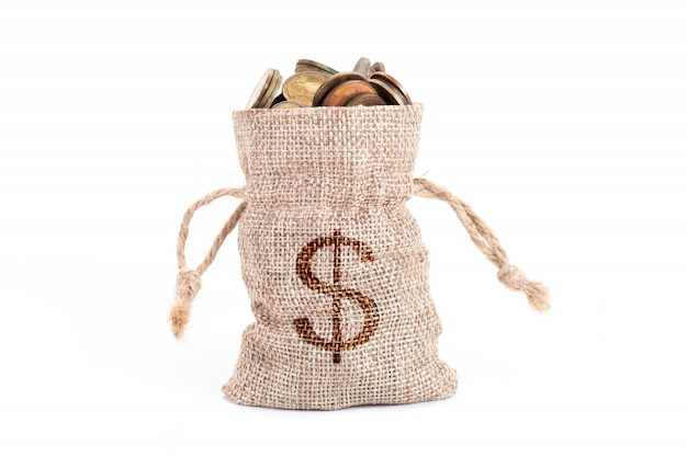 Bolsas de dinero y monedas aisladas