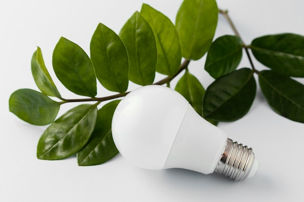 Bombilla de ahorro de energía en el escritorio