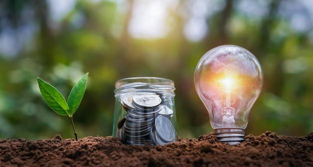 Bombilla con crecimiento de plantas y dinero en vaso de jarra en el suelo en la naturaleza. ahorro de energía. concepto de contabilidad financiera