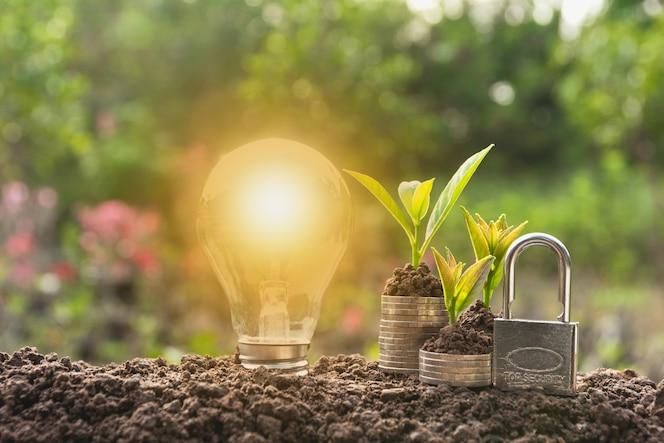 Bombilla de ahorro de energía con cerradura y árbol que crece en pilas de monedas