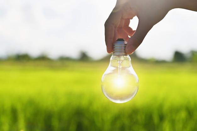 Bombilla de luz brilla en la mano al aire libre