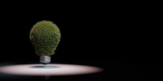 Bombilla de luz cubierta de hierba en el foco aislado