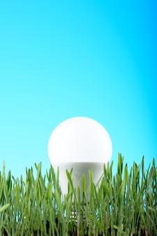 Bombilla de luz led sobre hierba verde
