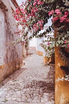 Bonita vista de un camino de piedra en un pueblo