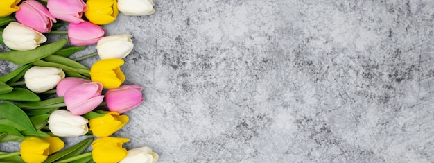 Bonito banner para el encabezado de su sitio web hecho con tulipanes en una piedra