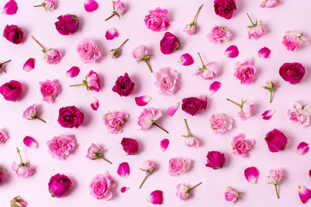 Bonito surtido de pétalos de rosa concepto