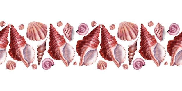 Borde de acuarela conchas de mar. conchas de nácar rosa.