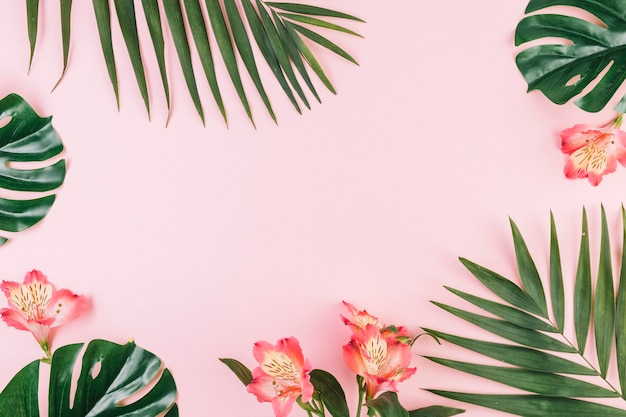 Borde de flores y hojas de palma