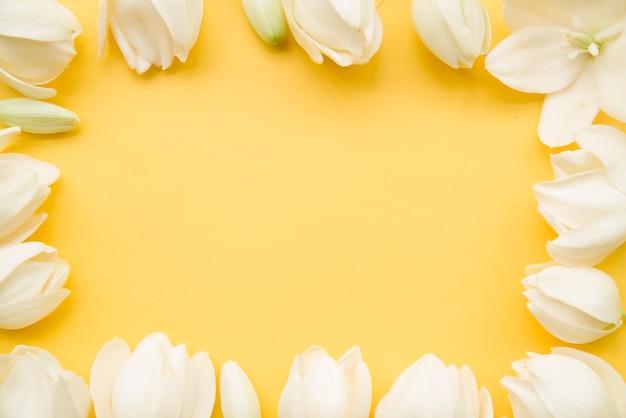 Borde de flor blanca sobre fondo amarillo con espacio de copia de texto