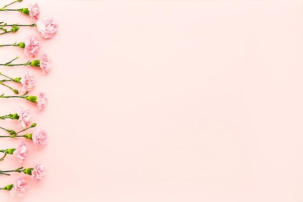 Borde de flores de clavel rosa sobre fondo rosa día de la madre celebración de cumpleaños del día de san valentín