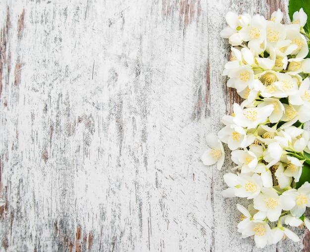Borde con flores de jazmín