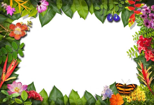 Borde de la naturaleza con fondo de flores y hojas verdes
