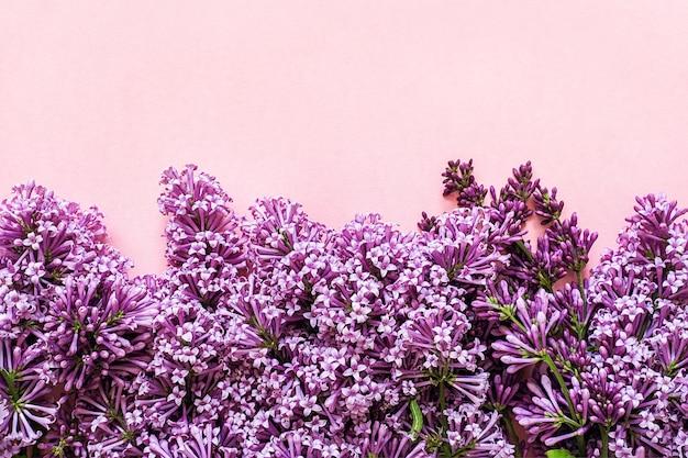 Borde de ramas florecientes de lila sobre fondo rosa con espacio de copia para su texto. concepto hola primavera, día de la mujer
