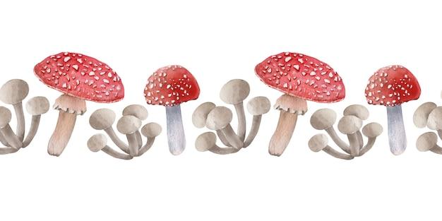 Bordes de acuarela con diferentes tipos de hongos