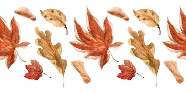 Bordes de acuarela otoño de encaje brillante