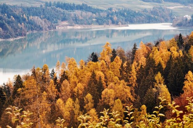Bosque colorido del otoño con el lago
