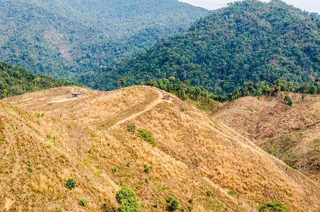 Bosque degradado en la montaña en tailandia