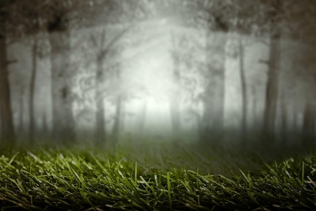 Bosque encantado con niebla y fondo de escena dramática. concepto de halloween