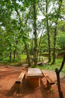 Bosque de espadan en castellon españa