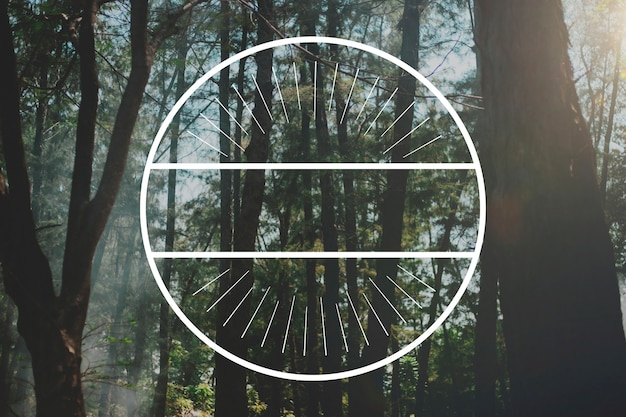 Bosque naturaleza relax banner espacio marco