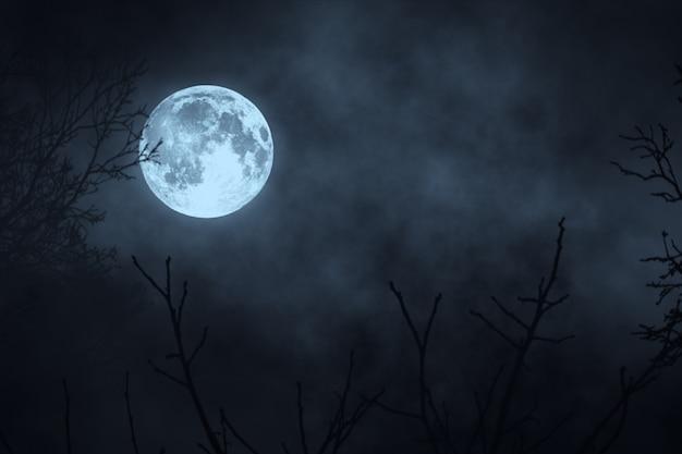 Bosque de la noche oscura contra la luna llena ilustración 3d