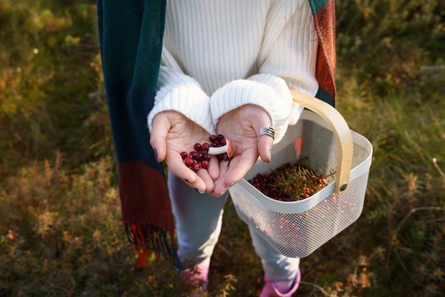 Bosque de otoño mano femenina sosteniendo setas y canasta de arándanos después de recoger bayas de temporada