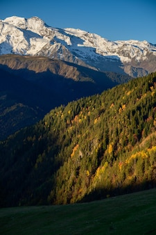 Bosque de otoño y montaña de nieve en heshkili hut savaneti, georgia.