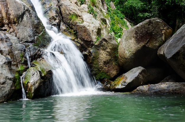 Bosque profundo pequeña cascada tropical