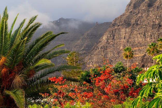Bosque tropical colorido con montaña