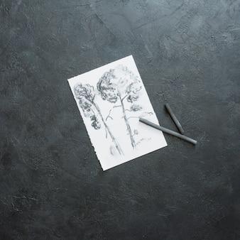Bosquejo hermoso del árbol en el libro blanco con el palillo del carbón de leña contra el fondo negro de la pizarra