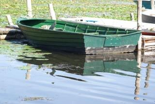 Bote de remos, río