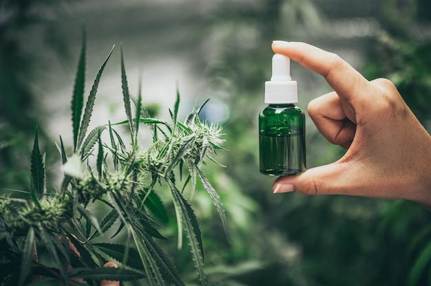 Botella de aceite de cannabis a mano