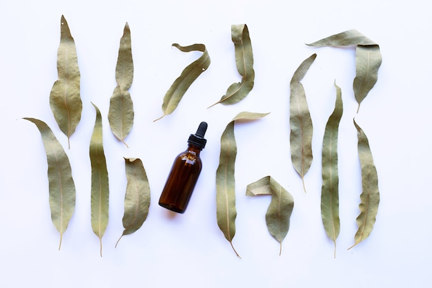 Botella de aceite esencial de eucalipto con hojas secas en blanco