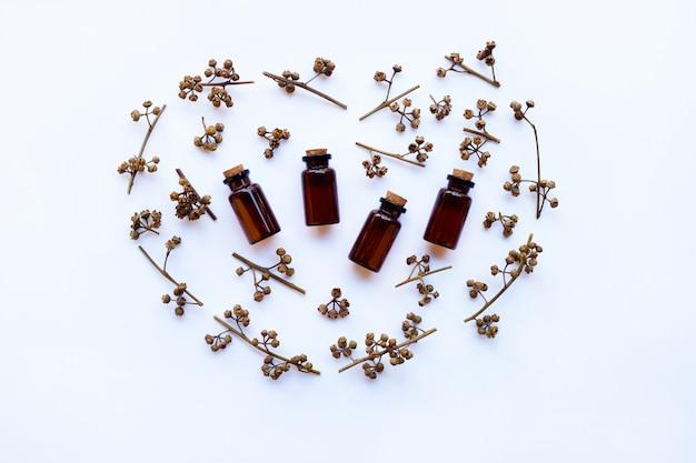Botella de aceite esencial del eucalipto con seco sembrado de eucalipto en el fondo blanco.